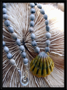 Hawaiian Sunrise Shell & Job's Tear Necklace