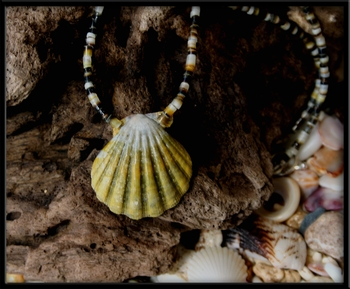 Green Sunrise Shell Heishi Shell Necklace