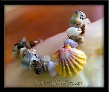 """Beach Candy"" Classic Hawaiian Sunrise Shell & Seashell Bracelet"