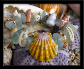 """Beach Candy"" Sunrise Shell & Seashell Bracelet with Aqua Sea Glass"