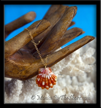 Red Hawaiian Sunrise Shell Gold Chain Bracelet