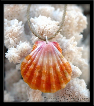 Pink Orange & White Sunrise Shell & Twisted Cord Necklace