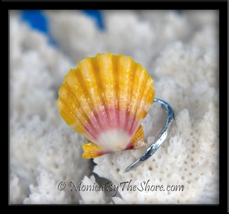 Classic Traditional Color Hawaiian Sunrise Shell Slant Sterling Silver Ring