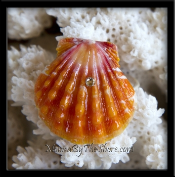 Fire Orange & Dark Pink Hawaiian Sunrise Shell Ring with Bling