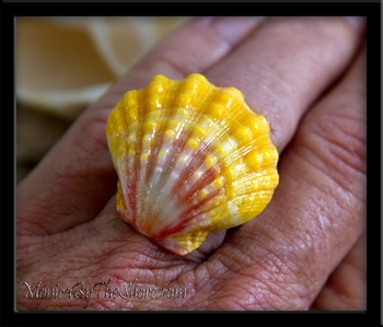 Extra Large Classic Pink & Yellow Hawaiian Sunrise Shell Silver Ring