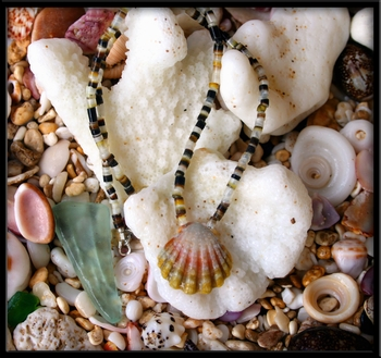 Hawaiian Sunrise Shell Baby Necklace on Heishi Shell Green