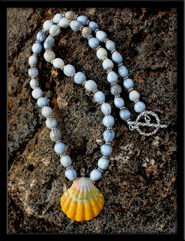 Brilliant Hawaiian Sunrise Shell, Job's Tears Seeds & Silver Necklace