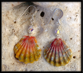 Hawaiian Rainbow Sunrise Shell & Crystal Earrings