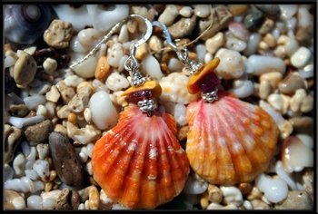 Orange Pink Sunrise Shell Earrings