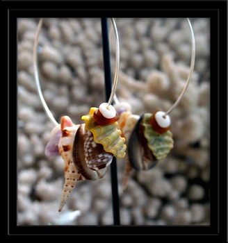 Ke Iki Beach Seashell & Green Sunrise Shell Chip Big Hoop Earrings