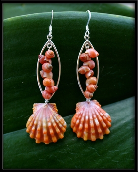 Hawaiian Sunrise Shell Tahitian Mongo Shell Fish Earrings