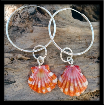 Red Orange Sunrise Shell  Silver Hoops & Rings Earrings