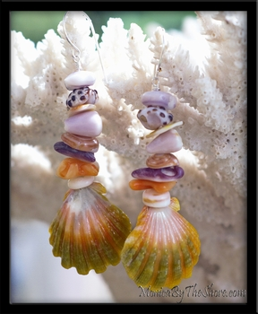 Seashell Love Hawaiian Rainbow Sunrise Shell Earrings