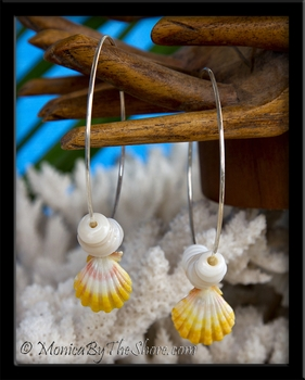 Big Hoop Hawaiian Sunrise Shell & Puka Shell Earrings