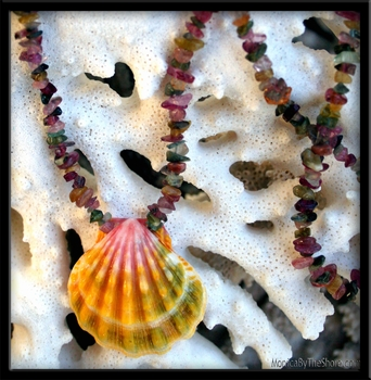 Multi Color Sunrise Shell & Tourmaline Necklace