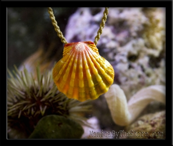 Kimi's Custom Hawaiian Sunrise Shell Pendant on Natural Cord Necklace
