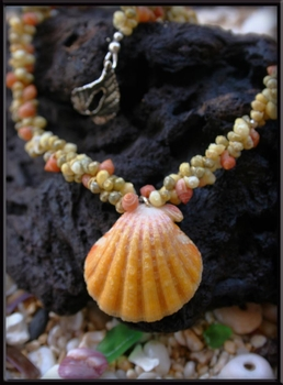 Yellow Sunrise Shell & Tahitian Mongo Shell Necklace