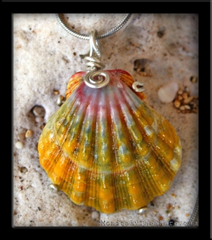 Hawaiian Sunrise Shell  Necklace Pastel Color Extra Large