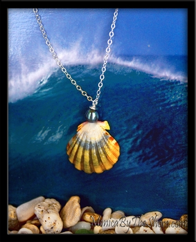 Blue Green Yellow Sunrise Shell & Tahitian Pearl Pendant Necklace