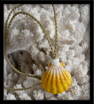 Kane Extra Large Gold Hawaiian Sunrise Shell Cord Necklace