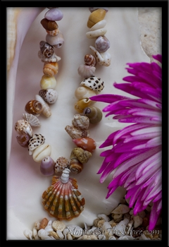 "Sunrise Shell ""Seashell Love"" 16"" Chunky Choker Lei"