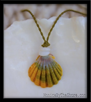 Country Rainbow Sunrise Shell & Puka Shell Necklace