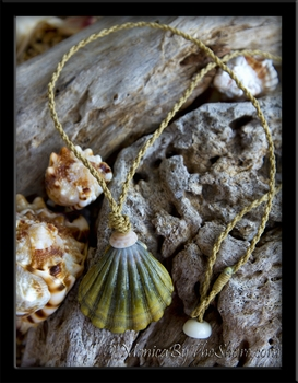"Custom for ""David"" Extra Large Hawaiian Moonrise Sunrise Shell Necklace"