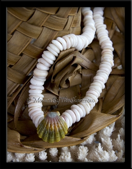 "Custom for ""Ron"" Chunky North Shore Puka Shell & Rainbow Moonrise Sunrise Shell Necklace"