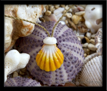 "Bright Yellow & White Hawaiian  ""Country"" Sunrise Shell & Puka Shell Cord Necklace"