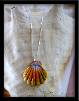 Blue Rainbow Hawaiian Sunrise Shell Silver Chain Necklace