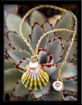 Country Style Soft Green & Pink Hawaiian Sunrise Shell & Puka Shell Cord Necklace