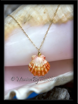 Orange & White Hawaiian Sunrise Shell with Gold Bead & Chain