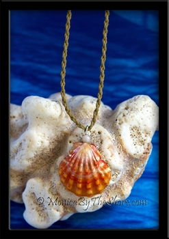 Fire Orange & Cream Hawaiian Sunrise Shell & Jasper Pendant & Twisted Cord Necklace