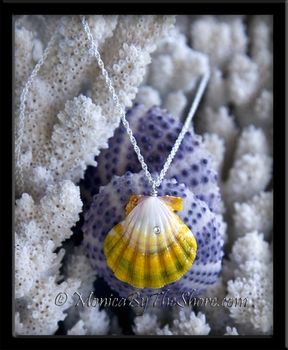 Large Multi Color Hawaiian Sunrise Shell with Swarovski Crystal Silver Rope Chain Neckalce