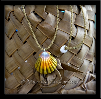 Hawaiian Rainbow Sunrise Shell on Twisted Cord Necklace