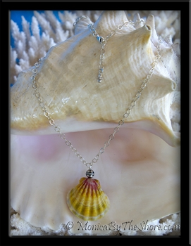 Jumbo Hawaiian Sunrise Shell Long Cable Chain Medallion Necklace