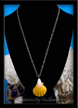 Huge Hawaiian Sunrise Shell & Puka Shells Medallion Style Silver Chain Necklace