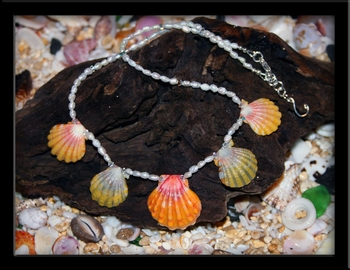 Hawaiian Rainbow Color Sunrise Shell & Pearl Necklace