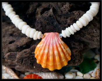 Pink Sunrise Shell and Puka Shell Necklace