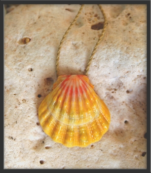 Classic Hawaiian Sunrise Shell Pendant Natural Cord Necklace