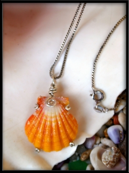 Deep Yellow & Bright White Sunrise Shell Silver Necklace