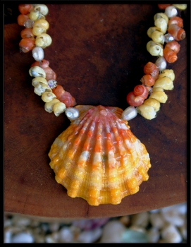 Yellow Orange Stripe Sunrise Shell, Mongo Shell, Pearl & Crystal Necklace