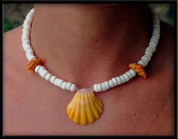 Sunrise Shell Puka Shell Choker Necklace