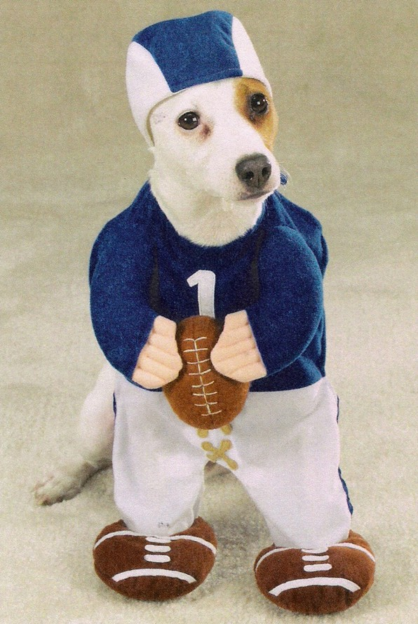 Football Fever Pet Costume ... & Football Fever Pet Costume - Kooldawgtees