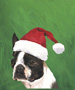 Boston Terrier  - Van Vliet Christmas Large Flag