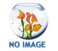 Laguna All Season Goldfish & Koi Food, Large Floating Pellet, 4.4 lbs