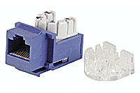 CAT6 Keystone Jack - Blue Color - Click to enlarge
