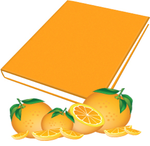 Book Sox - Scented Jumbo Book Cover - Orange