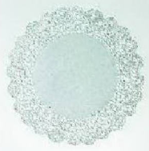 "8 PK 12"" Round Paper Doily - Medallion Lace Pattern"
