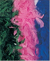 Rubies - 6 Ft Super Turkey Feather Boa - Pink